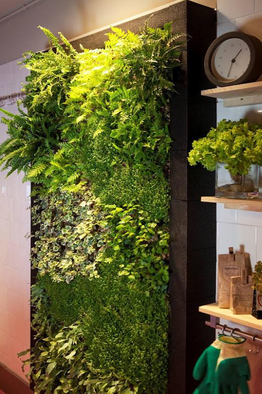 Beneficios de los jardines verticales en interiores for Beneficios de los jardines verticales