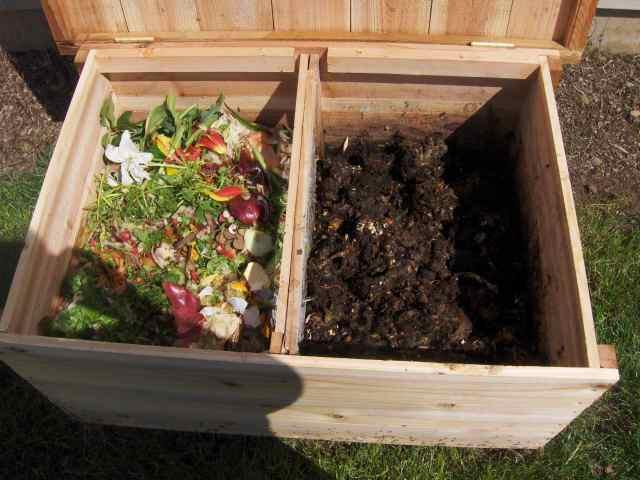 How To Make Earthworm Compost Macrobonsai Olivos